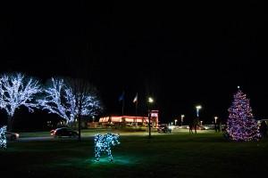 Holiday Tree 2017 2